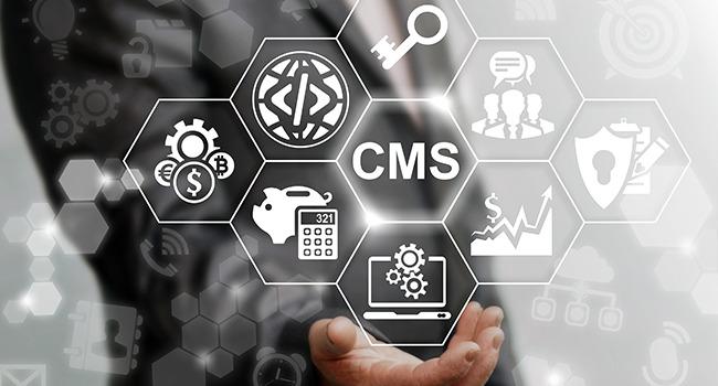 CMS Programmierung WordPress bei der Agentur in Recklinghausen im Ruhrgebiet